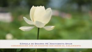 cápsula de dharma